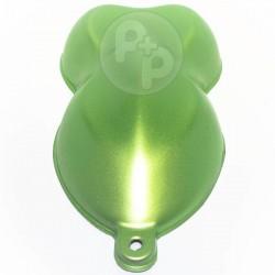 Iguana green